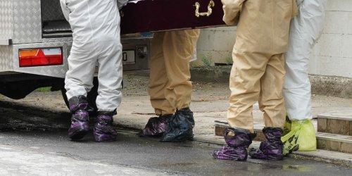"Сотрудники похоронного бюро носят на ногах ""кулек"" Додона"