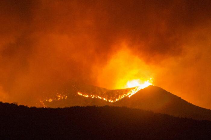 Горят тысячи гектаров: Калифорния охвачена лесными пожарами