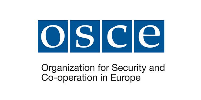 ОБСЕ не сможет обеспечить полноценное наблюдение за выборами в Молдове, Украине и Грузии