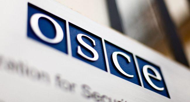 ОБСЕ оценила процесс голосования в Молдове 1 ноября